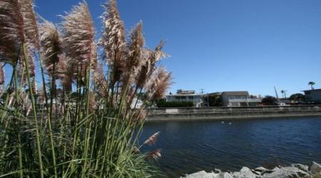 140 Creek Dr, Aptos, California 95003, 3 Bedrooms Bedrooms, ,2 BathroomsBathrooms,Furnished Rental,Vacation Rental,140 Creek Dr,1018